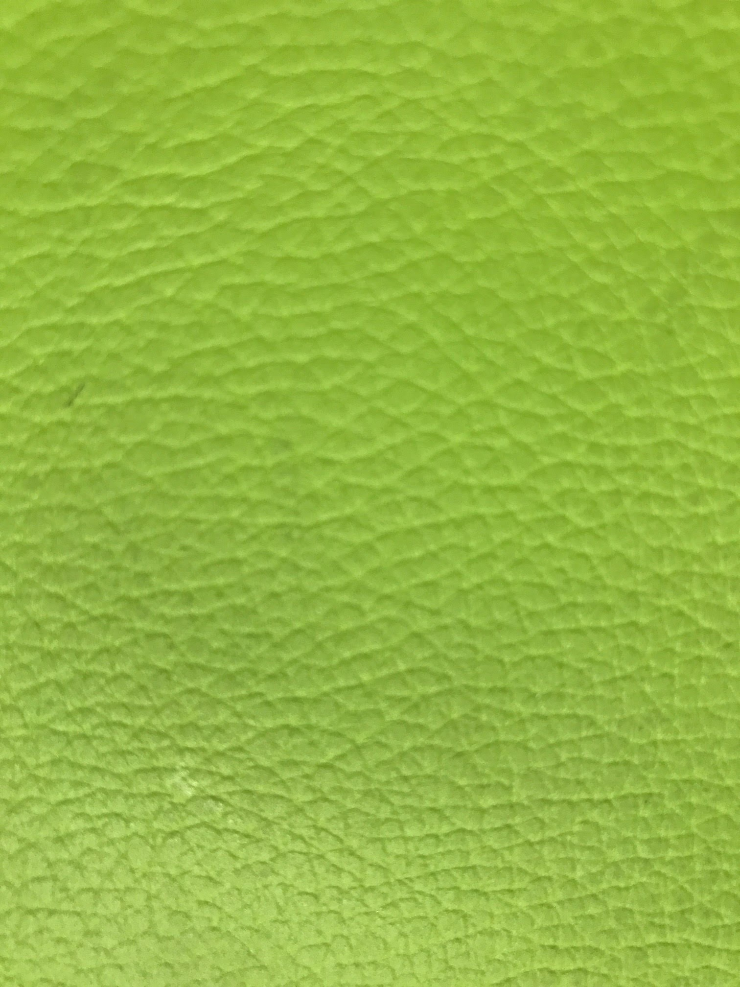 Acuario Alga